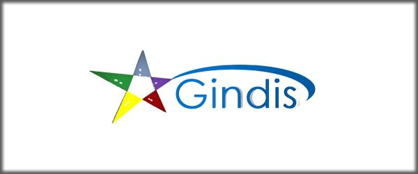Gindis Games Game preview